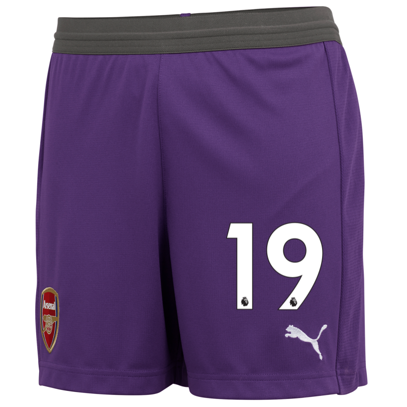 Arsenal Junior 18/19 Purple Goalkeeper Shorts