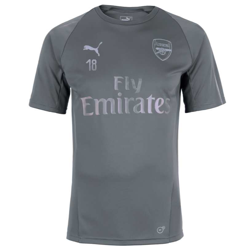 Arsenal Junior 18/19 Grey Training Shirt