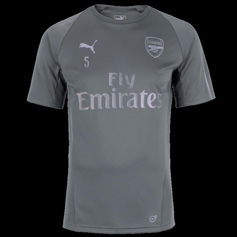Arsenal Junior 18/19 Grey Training Shirt