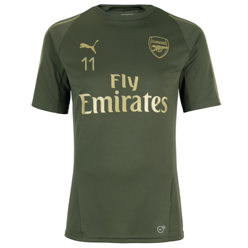 Arsenal Junior 18/19 Green Training Shirt