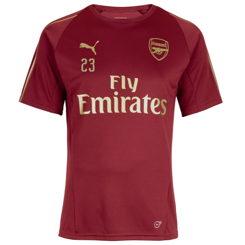 Arsenal Junior 18/19 Red Training Shirt