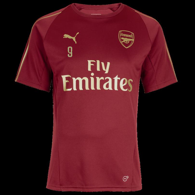 Arsenal Junior 18/19 Red Training Shirt