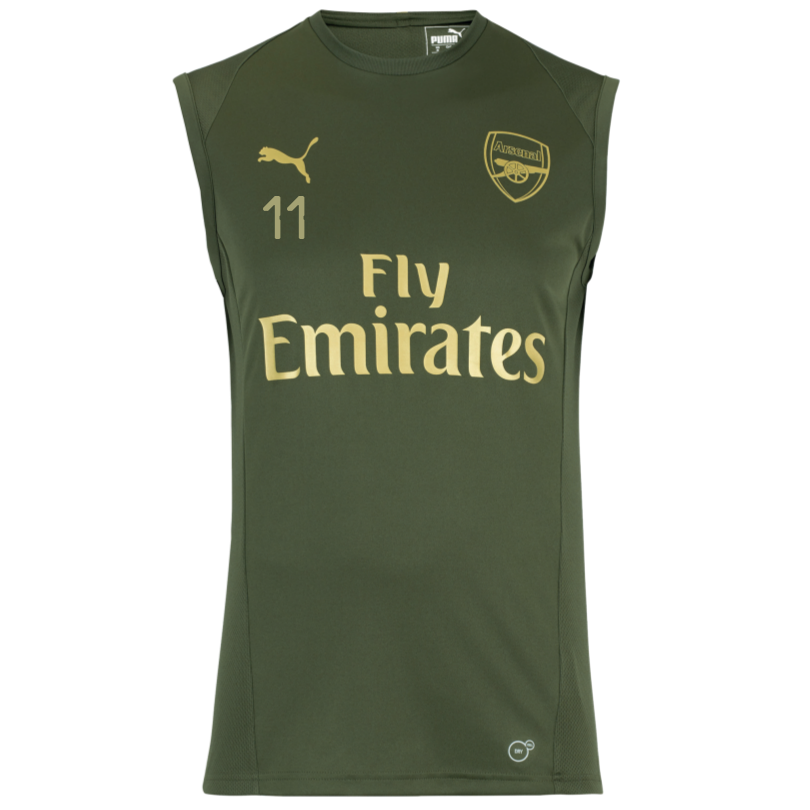 Arsenal 18/19 Green Sleeveless Training Shirt