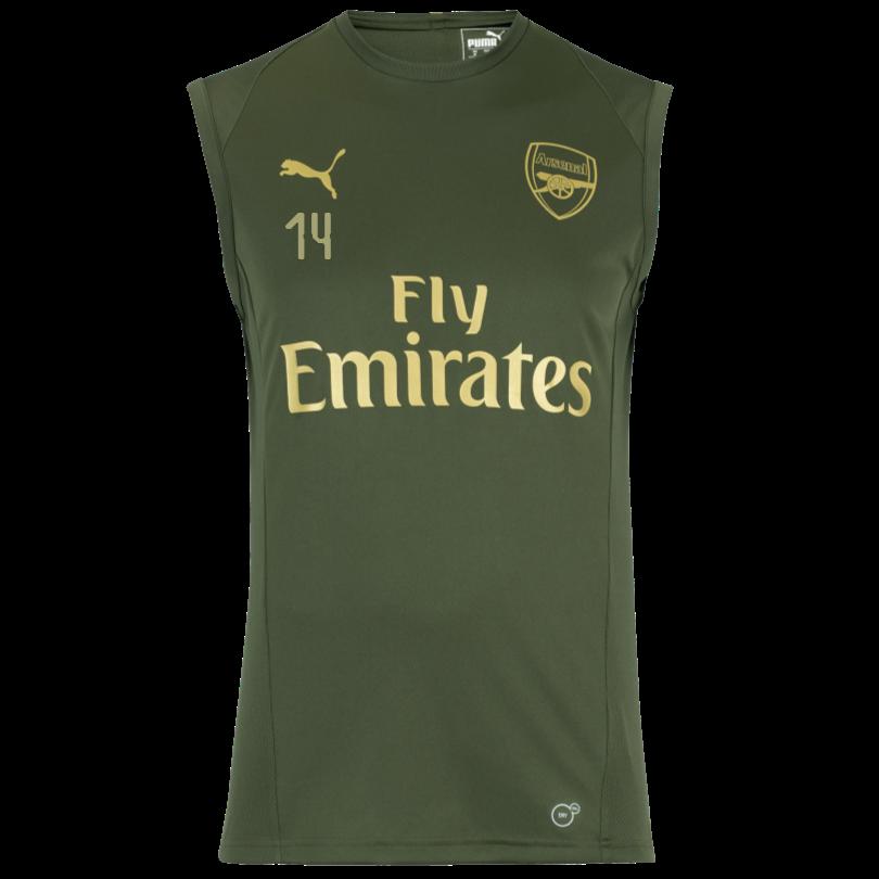 Arsenal 18/19 Green Sleeveless Training Shirt