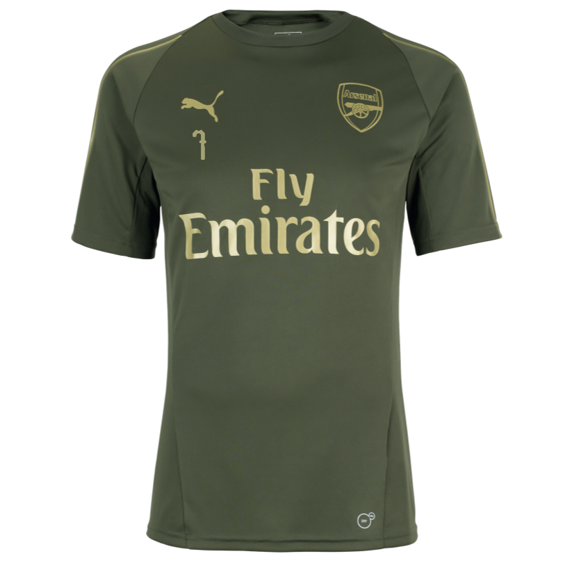 Arsenal 18/19 Green Training Shirt