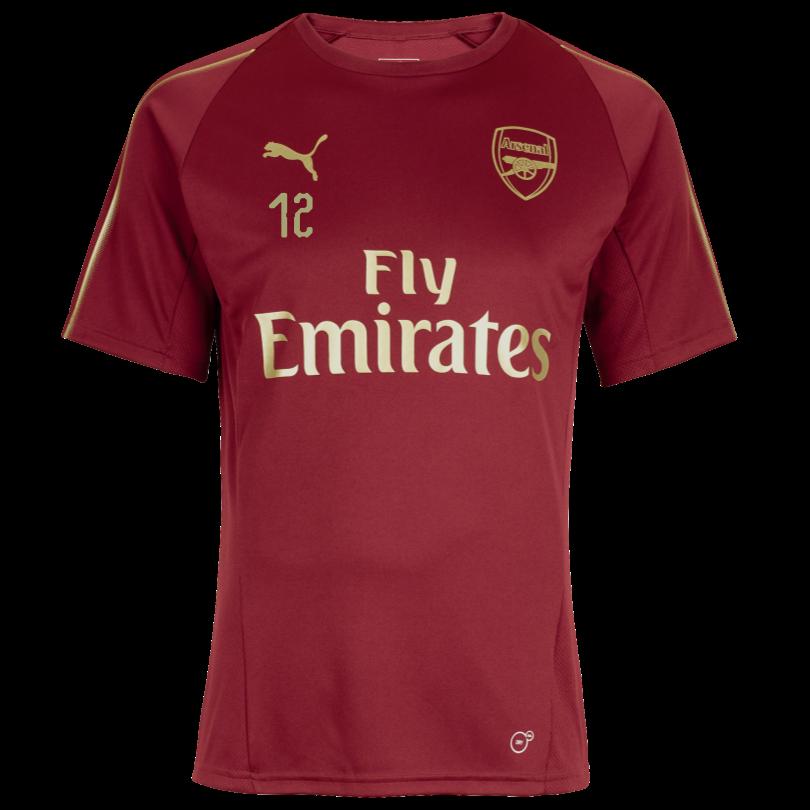 Arsenal 18/19 Red Training Shirt