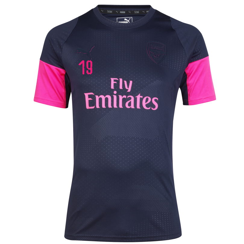 Arsenal 18/19 ftblNXT Training Shirt