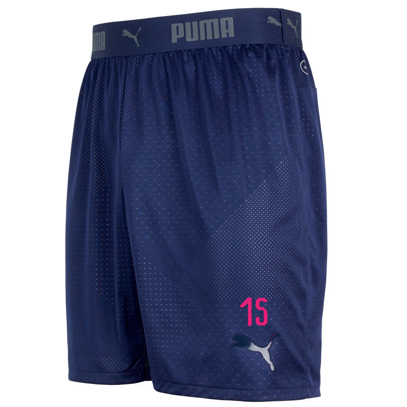 Arsenal 18/19 ftblNXT Training Shorts