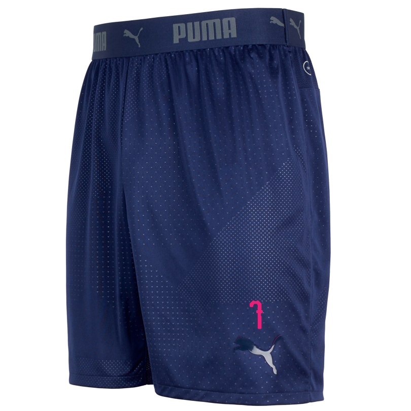 Arsenal 18/19 ftblNXT Training Shorts