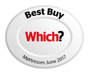 Which Best Buy Mattress