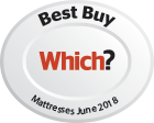 Which Best Buy